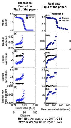 spatial-csd-theory-data-comparison